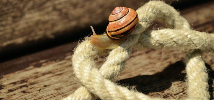 Ein Seil trifft auf…