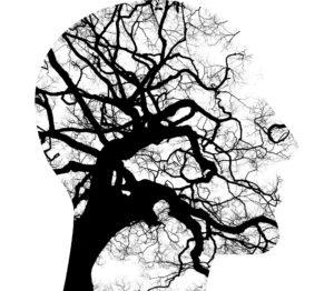 Schnelles und netzwerkartiges Denken bei Hochbegabung