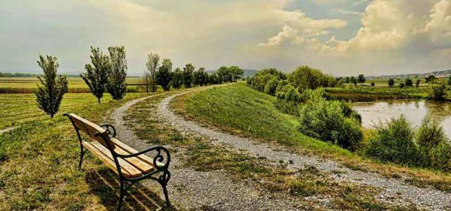 Psychotherapie im Gehen in der Natur in Graz Umgebung